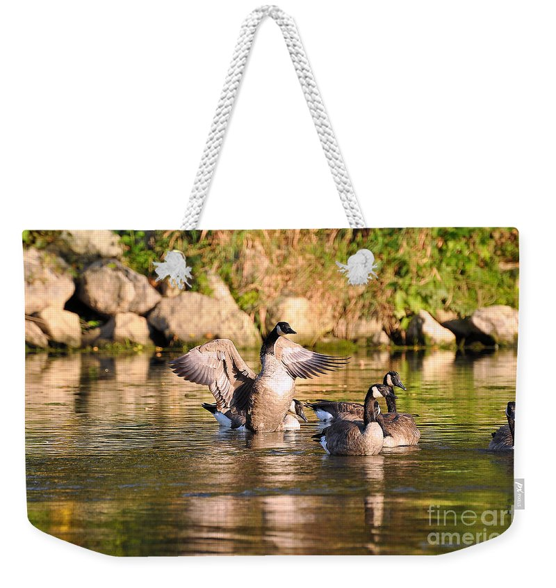Canada Goose Weekender Tote Bag featuring the photograph Attention Please by Todd Hostetter