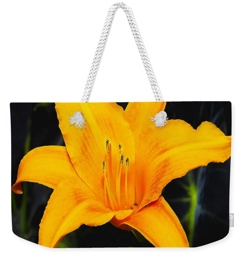 Aurelian Lily Weekender Tote Bag featuring the photograph Aurelian Lily by Ingrid Smith-Johnsen