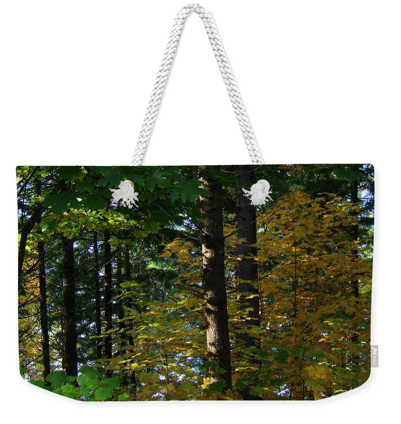 Bloom Weekender Tote Bag featuring the photograph Autumn 10 by J D Owen