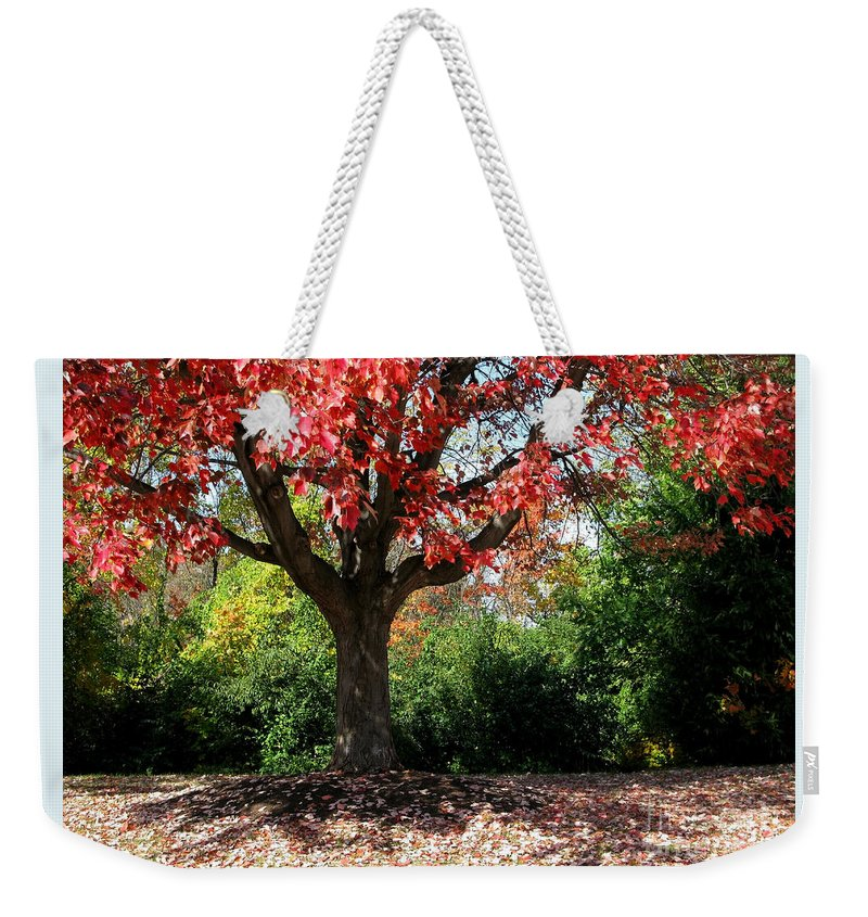 Autumn Weekender Tote Bag featuring the photograph Autumn Ablaze by Ann Horn