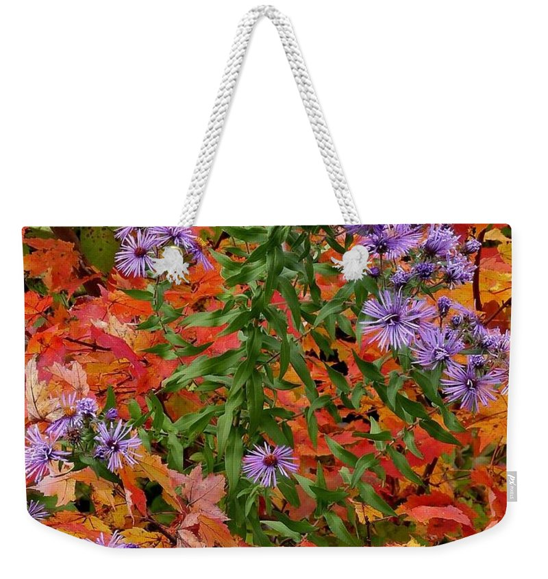 Nature Weekender Tote Bag featuring the photograph Autumn Asters by Charles Ford