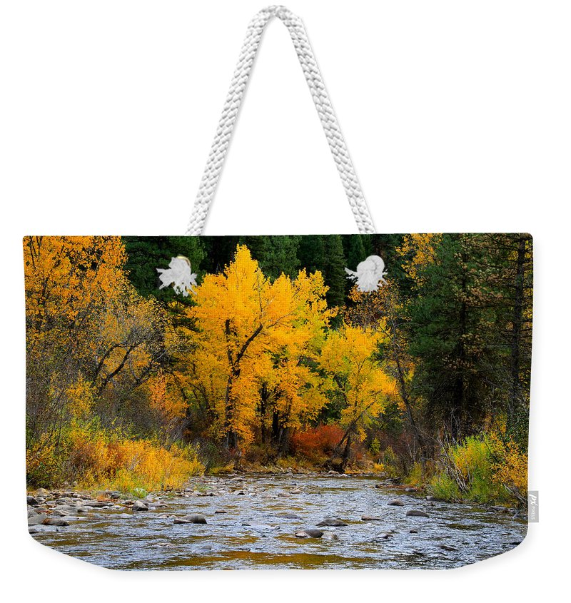 Landscape Weekender Tote Bag featuring the photograph Autumn Beauty In Boise County by Ed Riche