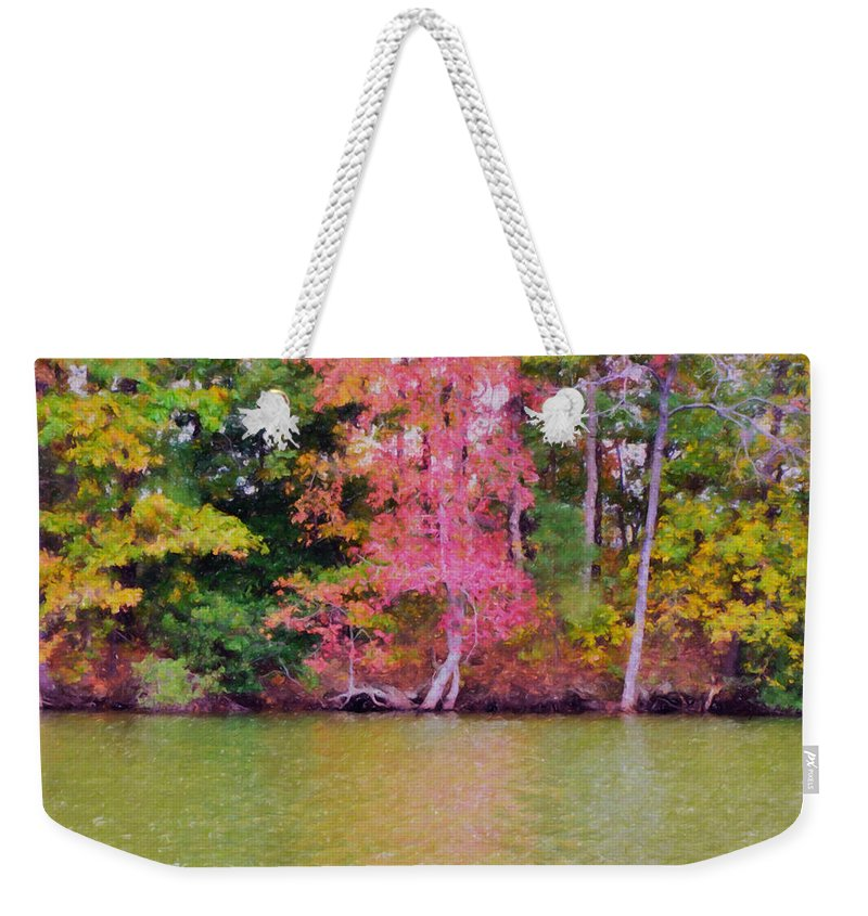 Background Weekender Tote Bag featuring the painting Autumn Color In Norfolk Botanical Garden 1 by Jeelan Clark