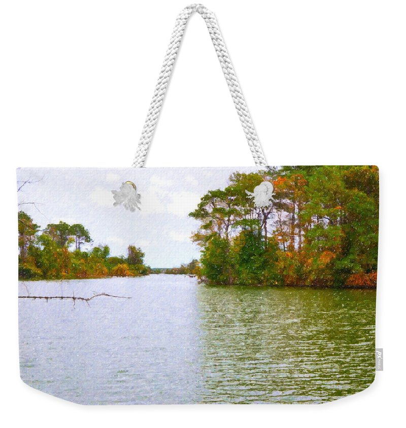 Background Weekender Tote Bag featuring the painting Autumn Color In Norfolk Botanical Garden 2 by Jeelan Clark