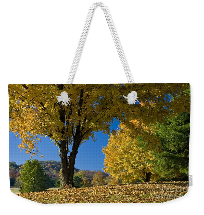 Autumn Weekender Tote Bag featuring the photograph Autumn Colors by Brian Jannsen