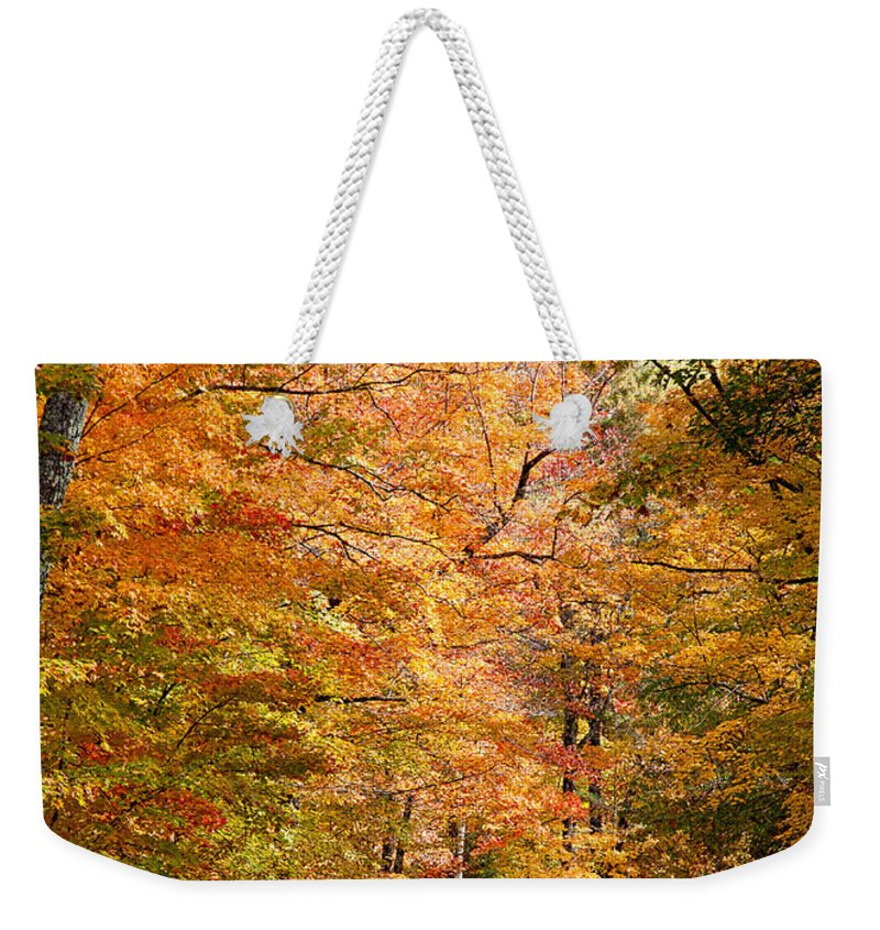 David Perry Lawrence Weekender Tote Bag featuring the photograph Autumn Colors - Colorful Fall Leaves Wisconsin IIi by David Perry Lawrence