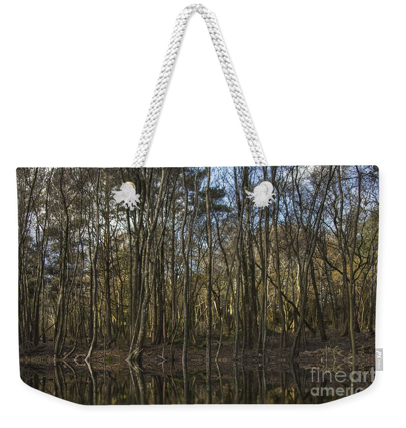 Autumn Landscape Weekender Tote Bag featuring the photograph Autumn Colours by Brian Roscorla
