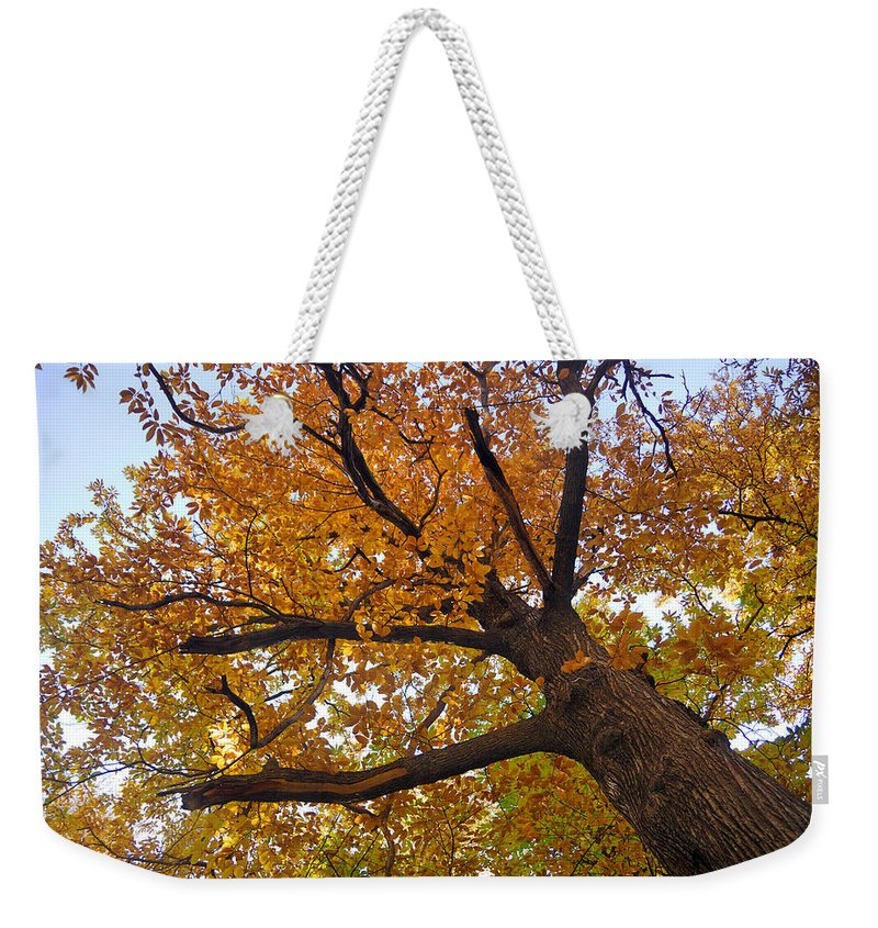 Chestnut Weekender Tote Bag featuring the photograph Autumn Dreams by Guido Montanes Castillo
