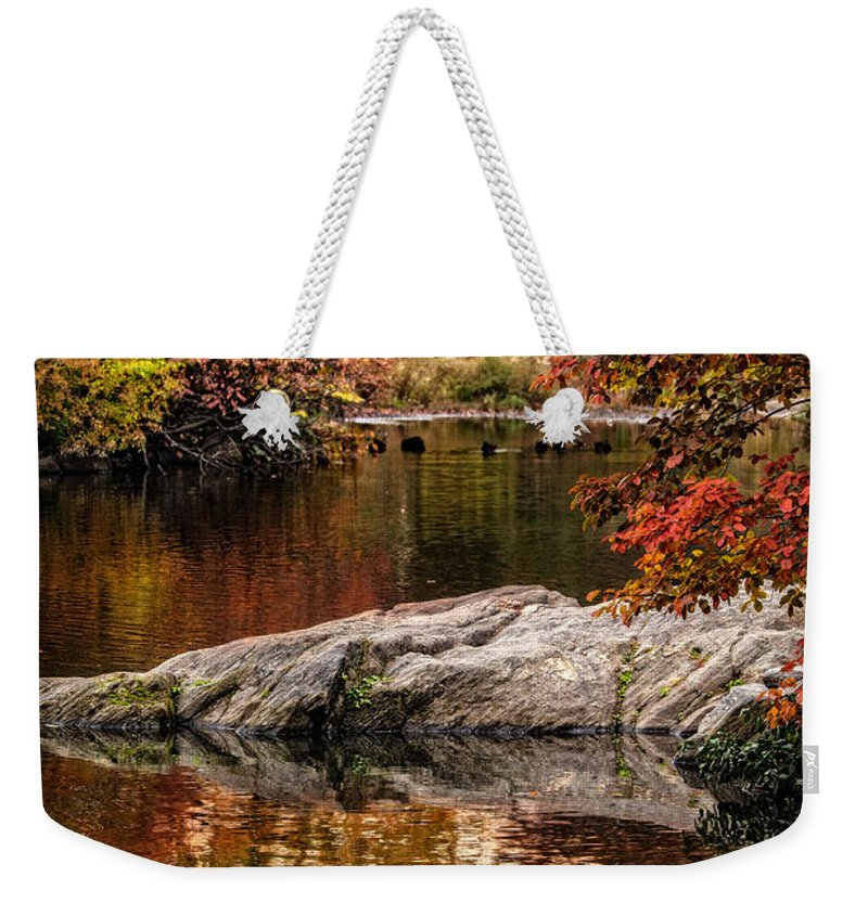 Central Park Weekender Tote Bag featuring the photograph Autumn Duck Couple by Chris Lord