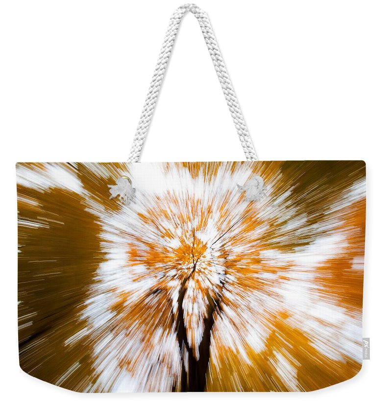 Autumn Woodland Weekender Tote Bag featuring the photograph Autumn Explosion by Dave Bowman