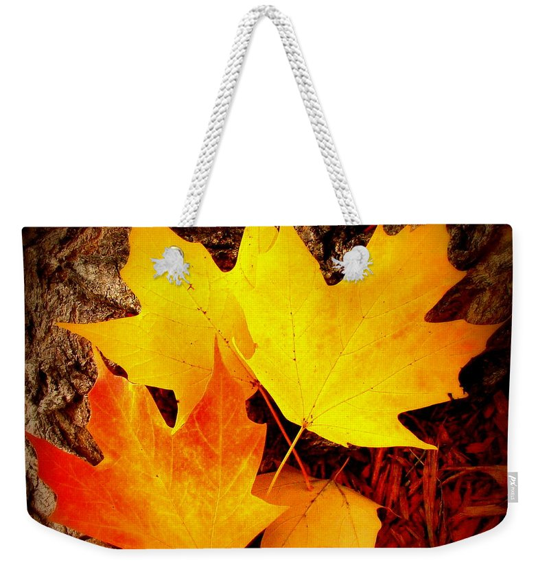 Fine Art Weekender Tote Bag featuring the photograph Autumn Fire by Rodney Lee Williams