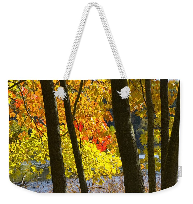 Art Weekender Tote Bag featuring the photograph Autumn Forest Scene by Randall Nyhof