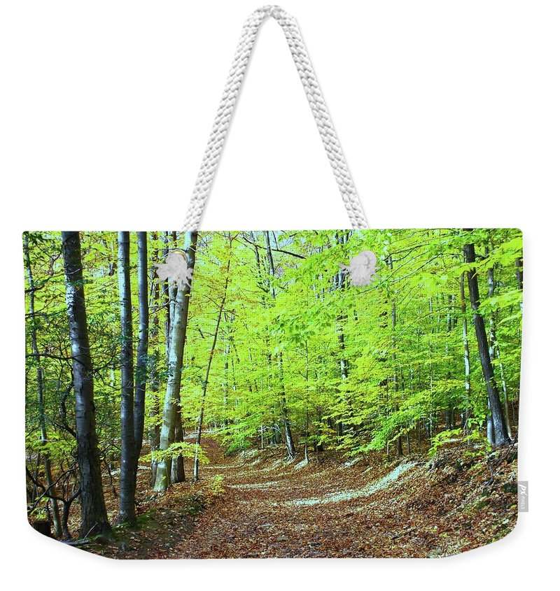 Eagle Rock Reservation Weekender Tote Bag featuring the photograph Autumn Gold 3 by Allen Beatty