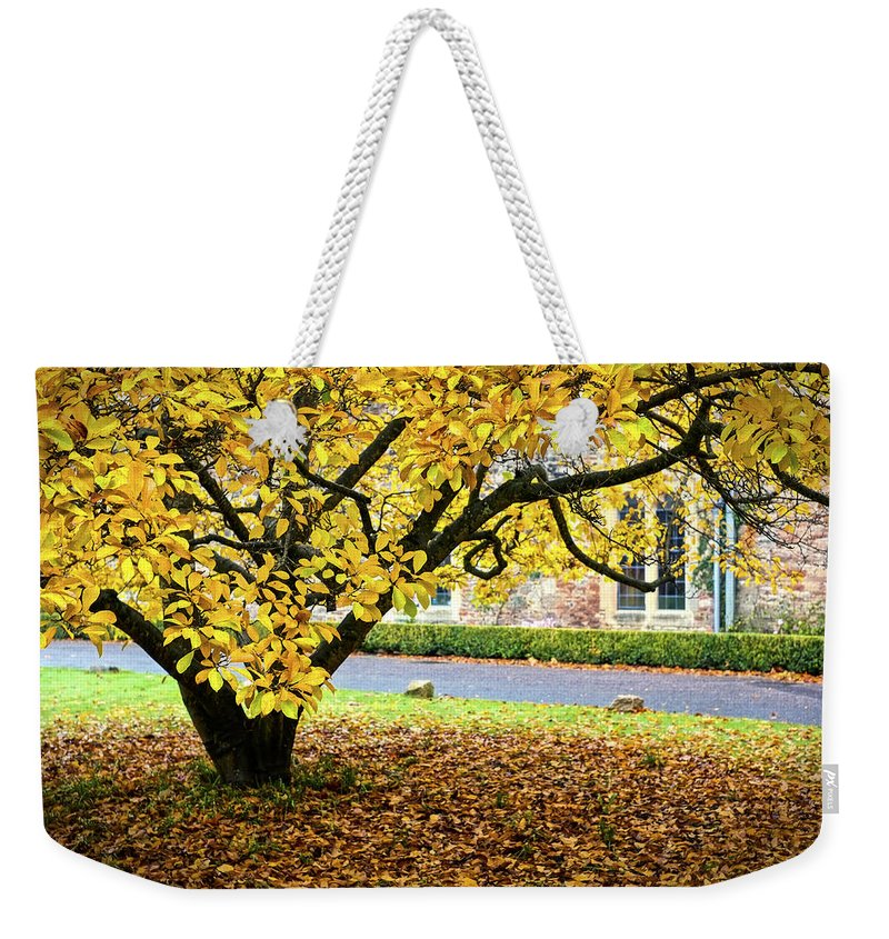 Uk Weekender Tote Bag featuring the photograph Autumn Gold by Christopher Rees