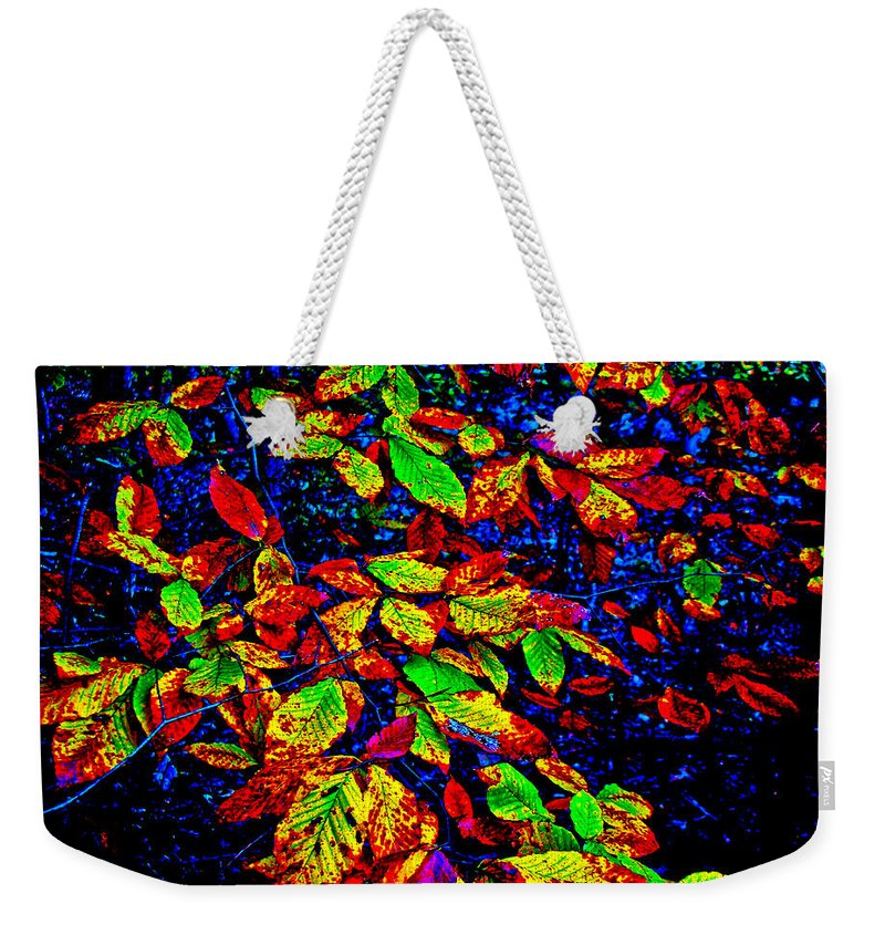Autumn Weekender Tote Bag featuring the photograph Autumn In Extremis by Mother Nature