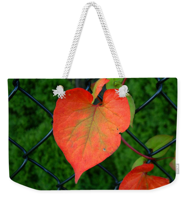 Vine Weekender Tote Bag featuring the photograph Autumn In July by RC deWinter