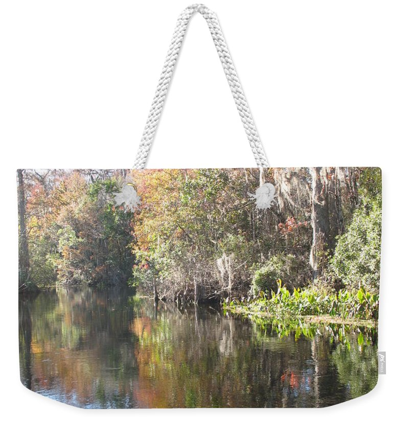 Swamp Weekender Tote Bag featuring the photograph Autumn In A Swamp by Christiane Schulze Art And Photography