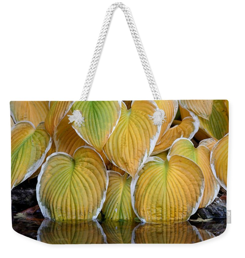 Autumn Weekender Tote Bag featuring the photograph Autumn Leafs Dipping Their Feet by Dreamland Media