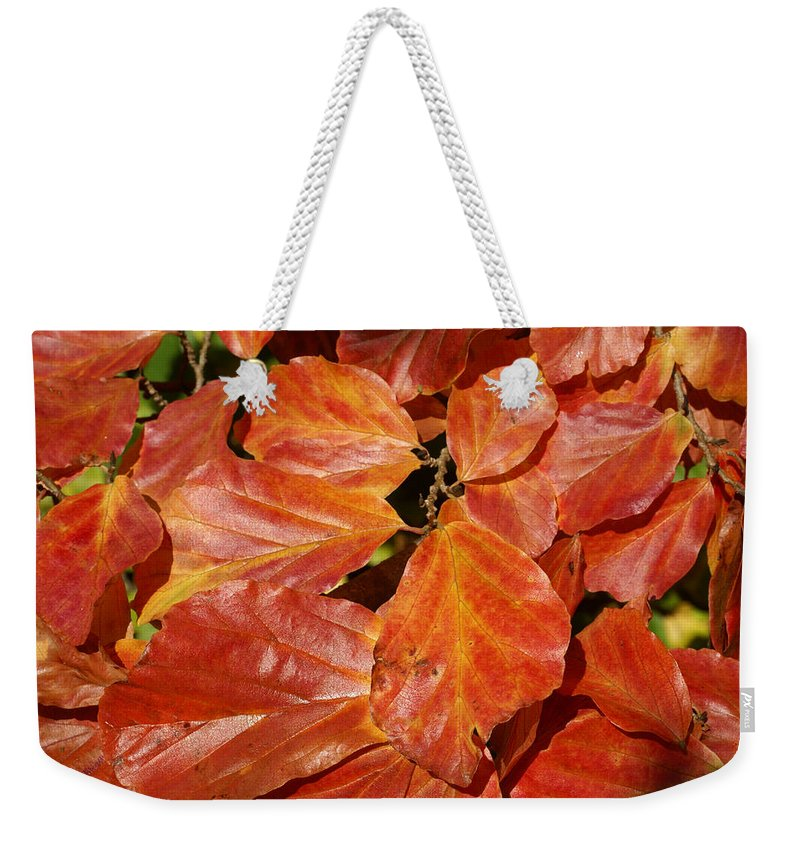 Autumn Weekender Tote Bag featuring the photograph Autumn Leaves 80 by Ron Harpham