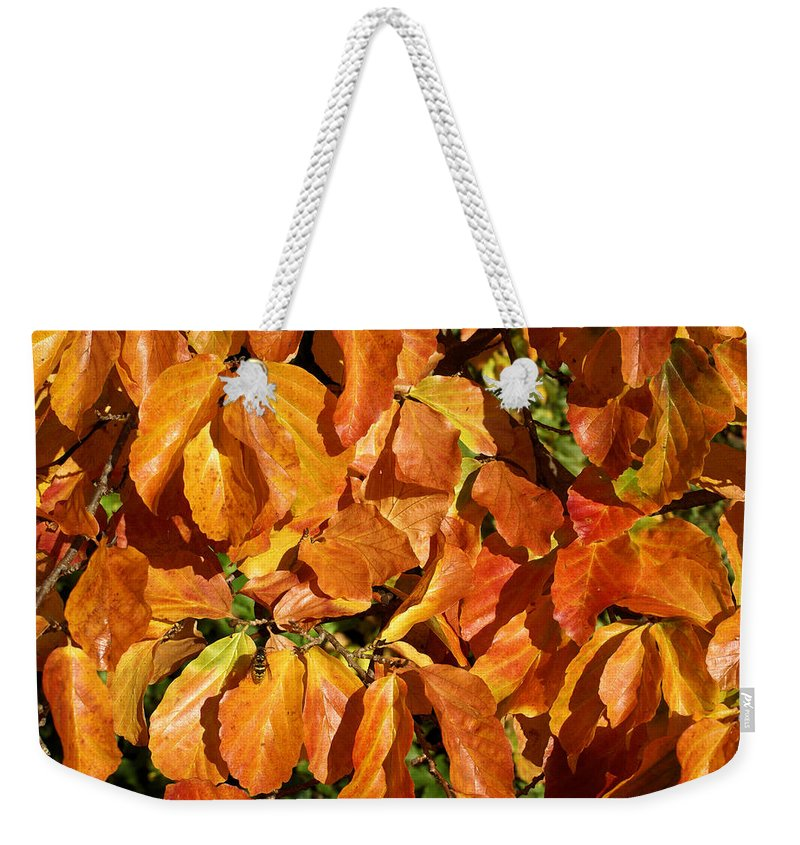 Autumn Weekender Tote Bag featuring the photograph Autumn Leaves 82 by Ron Harpham