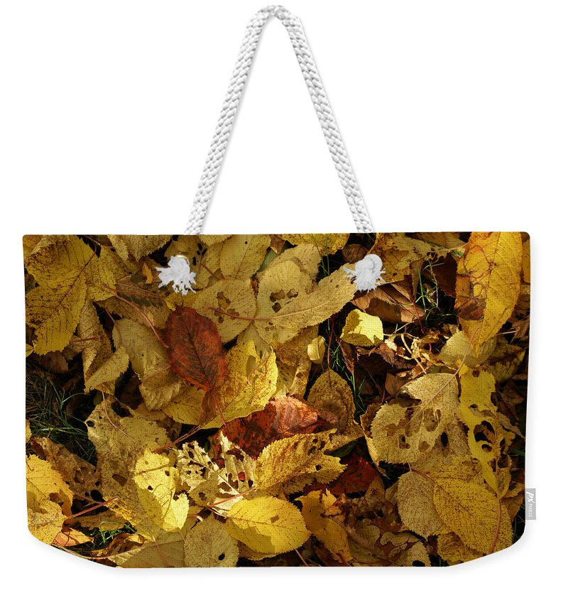 Autumn Weekender Tote Bag featuring the photograph Autumn Leaves 94 by Ron Harpham