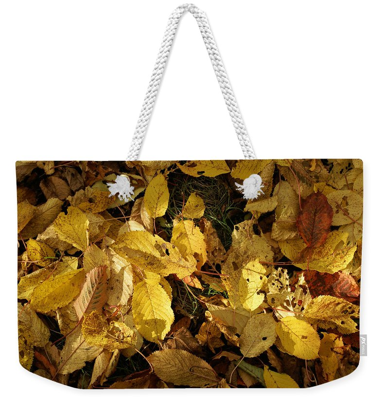 Autumn Weekender Tote Bag featuring the photograph Autumn Leaves 95 by Ron Harpham