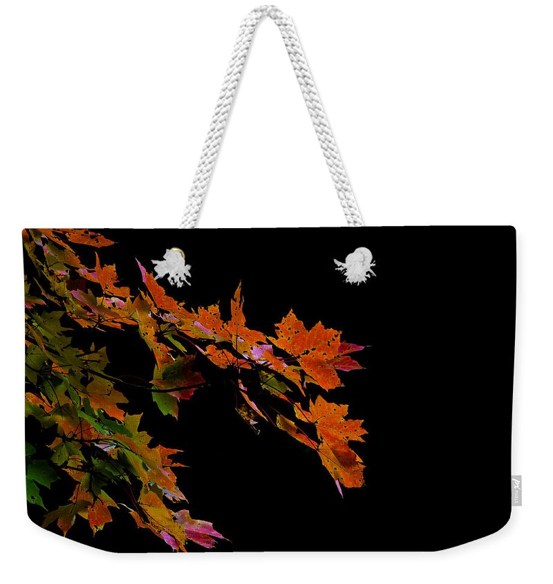 Autumn Weekender Tote Bag featuring the photograph Autumn Leaves by David Kay