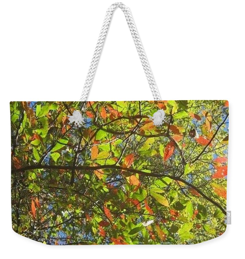 Mountain Weekender Tote Bag featuring the photograph Autumn Leaves by Melissa Darnell Glowacki