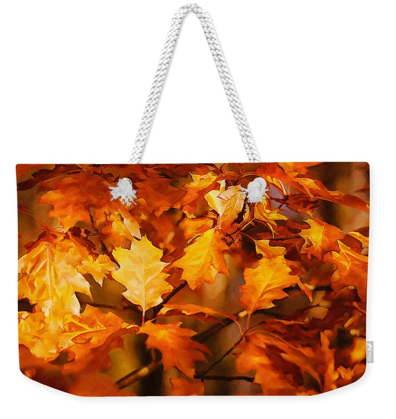Autumn Weekender Tote Bag featuring the photograph Autumn Leaves Oil by Steve Harrington