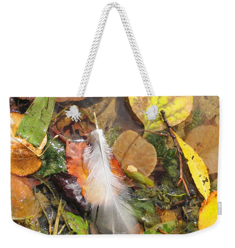 Autumn Weekender Tote Bag featuring the photograph Autumn Leavings by Ann Horn