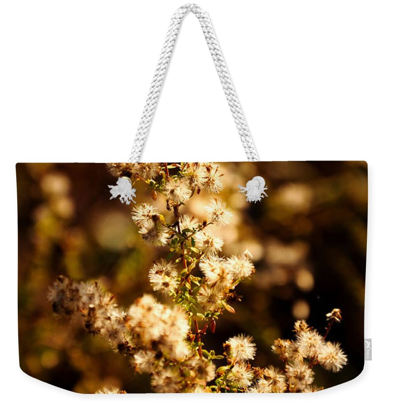 Autumn Weekender Tote Bag featuring the photograph Autumn Morning by Mark Valentine