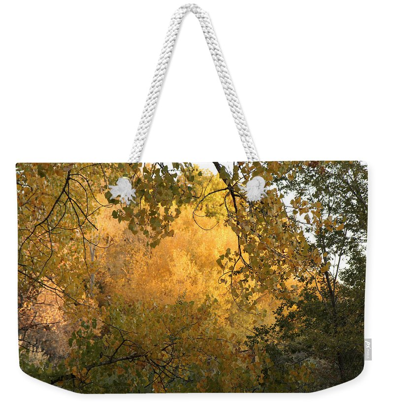 Nature Weekender Tote Bag featuring the photograph Autumn On The Bosque by Noa Mohlabane