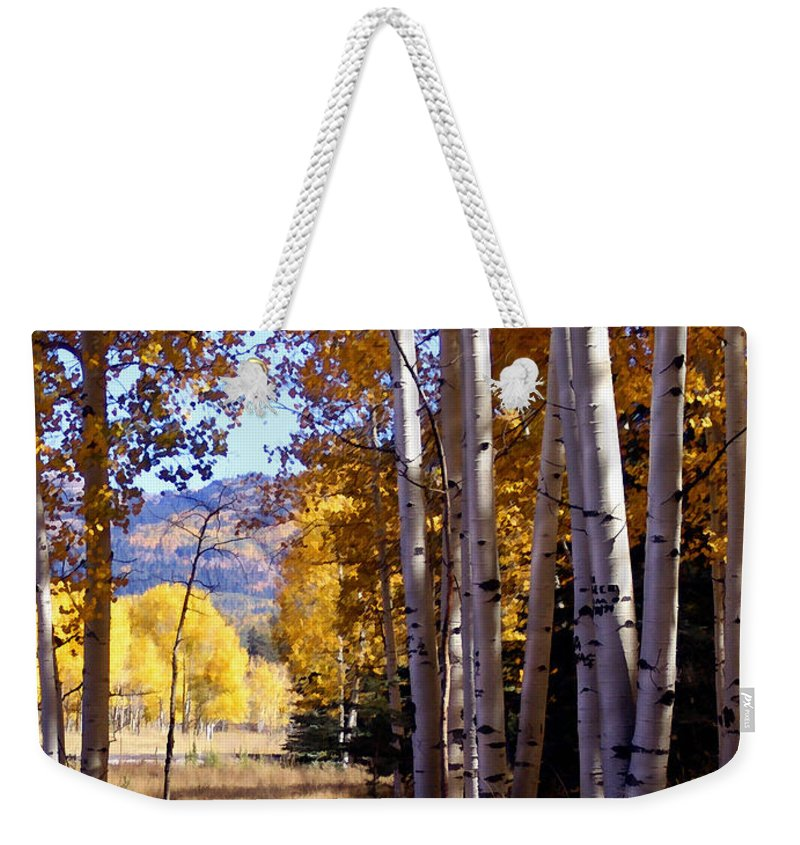 Trees Weekender Tote Bag featuring the photograph Autumn Paint Chama New Mexico by Kurt Van Wagner