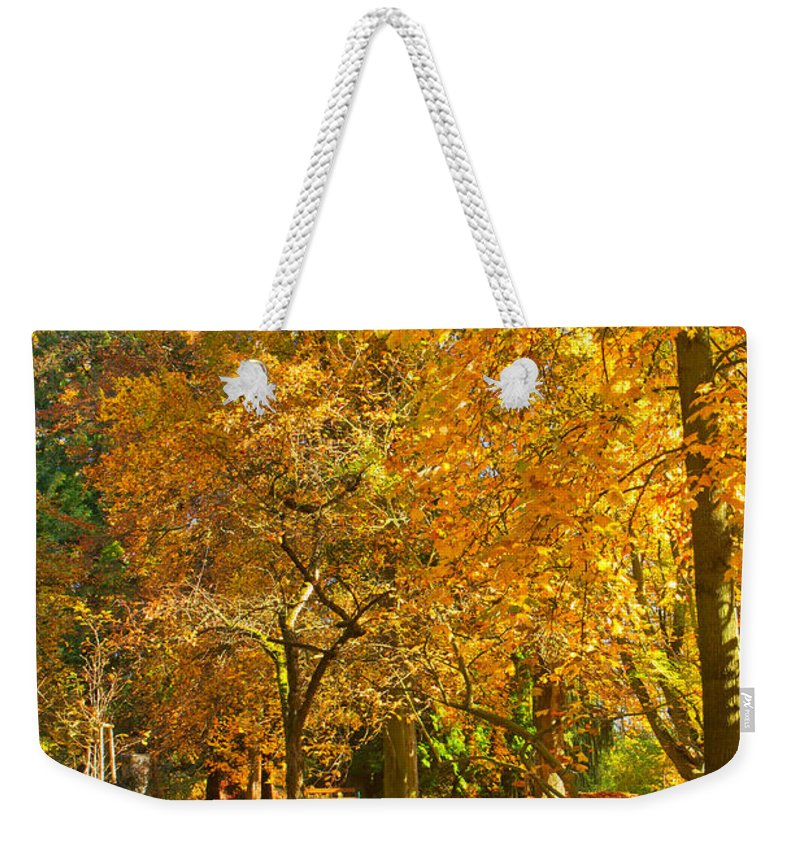 Autumn Weekender Tote Bag featuring the photograph Autumn Park by Jaroslav Frank