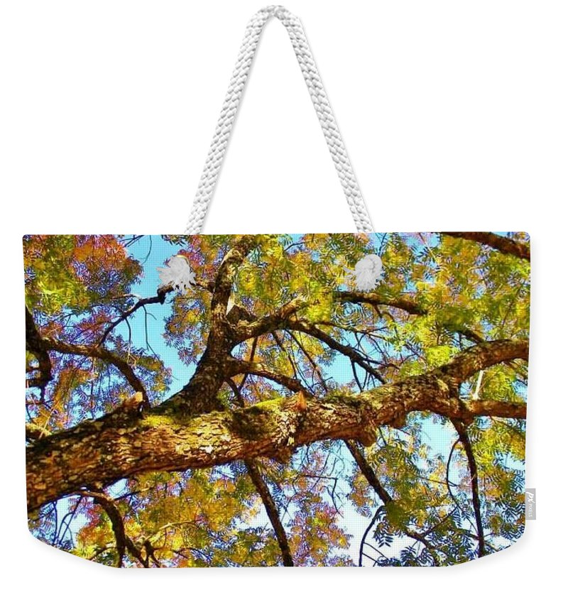 Postcard Weekender Tote Bag featuring the digital art Autumn Revealed by Matthew Seufer