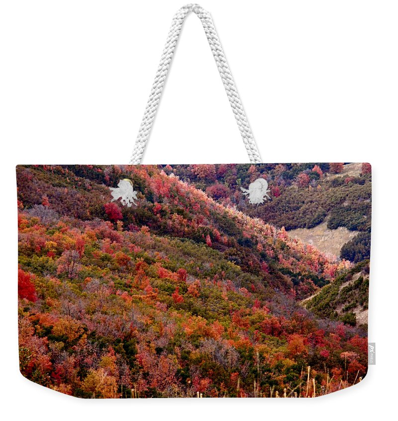 Autumn Weekender Tote Bag featuring the photograph Autumn by Rona Black