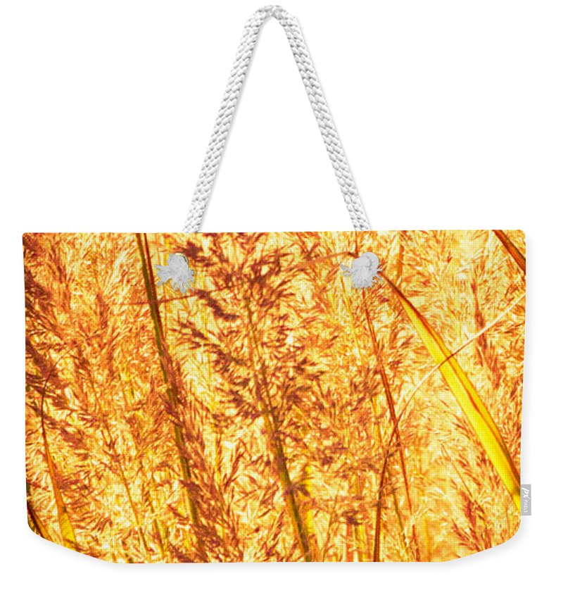 Grass Weekender Tote Bag featuring the photograph Autumns Passion by Bob Orsillo
