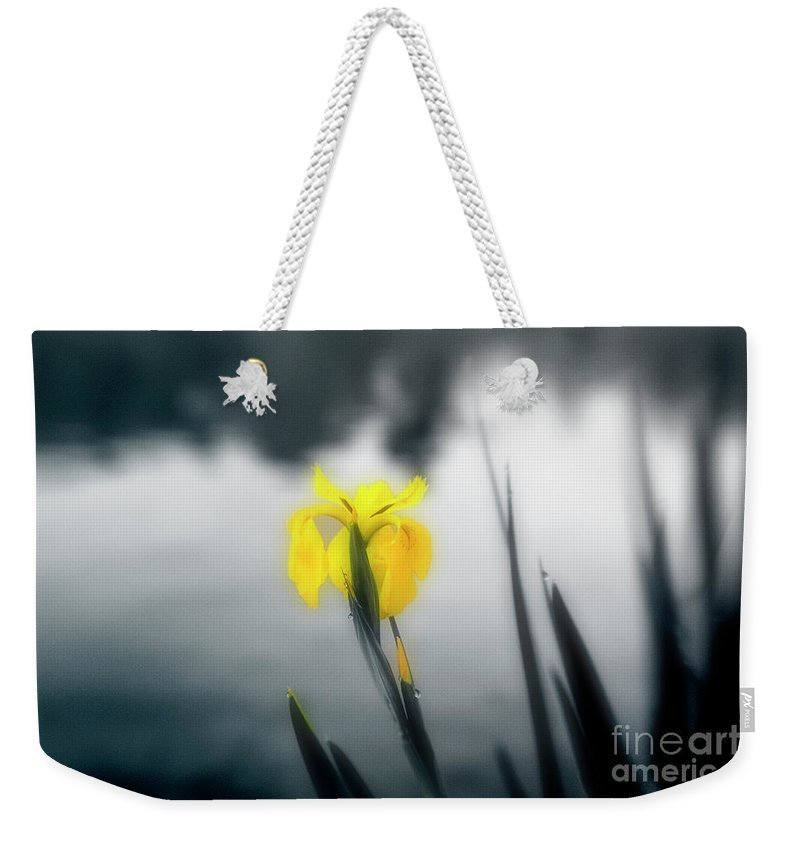 Iris Weekender Tote Bag featuring the photograph Awakening by Scott Pellegrin