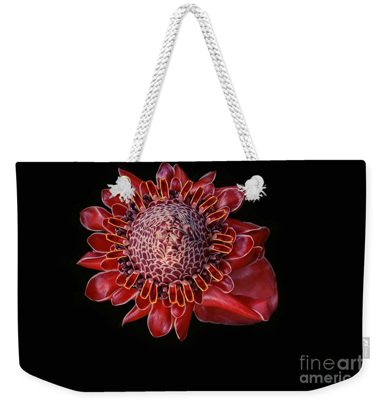 Aloha Weekender Tote Bag featuring the photograph Awapuhi Ko Oko'o - Torch Ginger - Etlingera Elatior - Hawaii by Sharon Mau