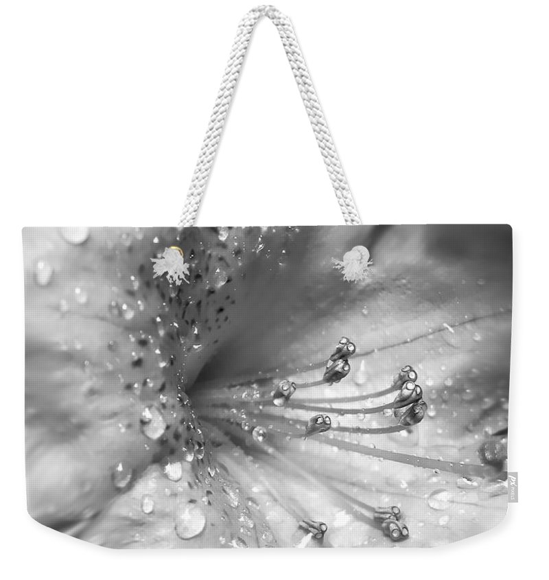 Azalea Weekender Tote Bag featuring the photograph Azalea Flower With Raindrops Monochrome by Jennie Marie Schell