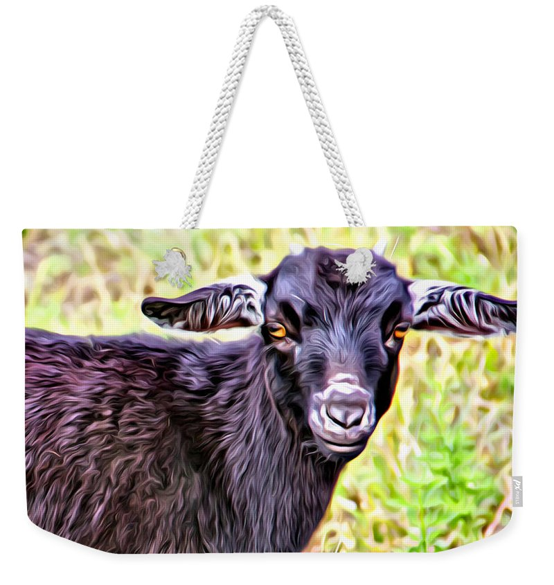 Baby Goat Weekender Tote Bag featuring the photograph Baby Billy by Alice Gipson