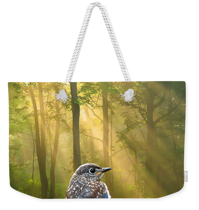 Baby Blue Bird Weekender Tote Bag featuring the photograph Baby Blue In Morning Fog Sunlight by Randall Branham