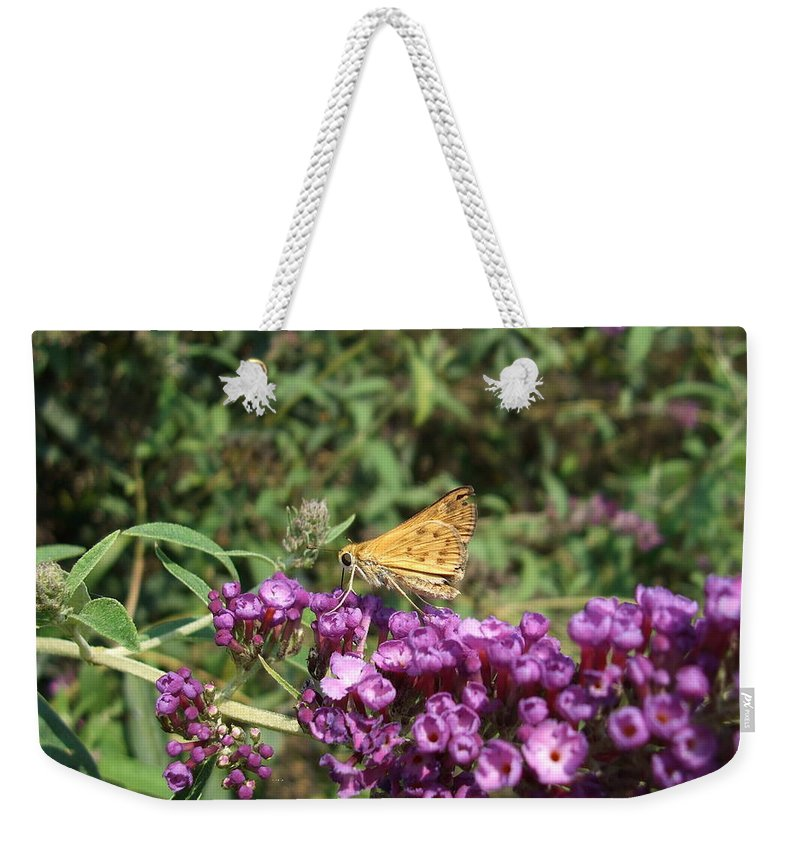 Butterfly Weekender Tote Bag featuring the photograph Baby Butterfly by Lisa Wormell