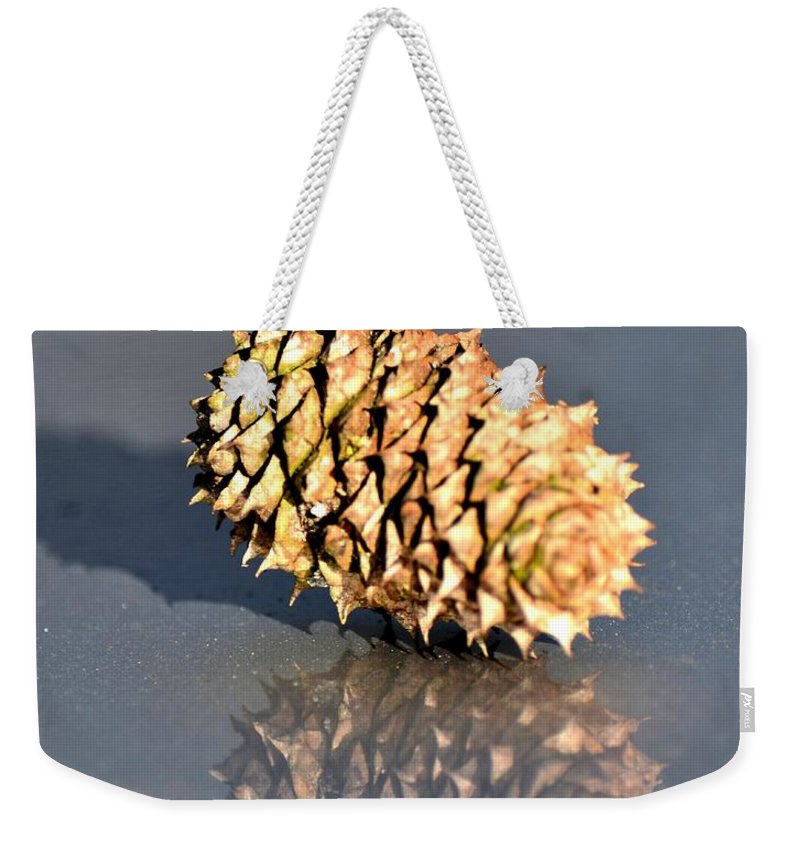 Baby Pine Cone Weekender Tote Bag featuring the photograph Baby Pine Cone by Maria Urso