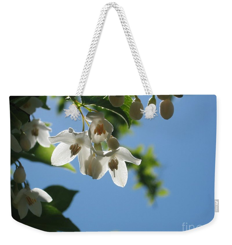 White Weekender Tote Bag featuring the photograph Backlit Blossom by Ray Konopaske