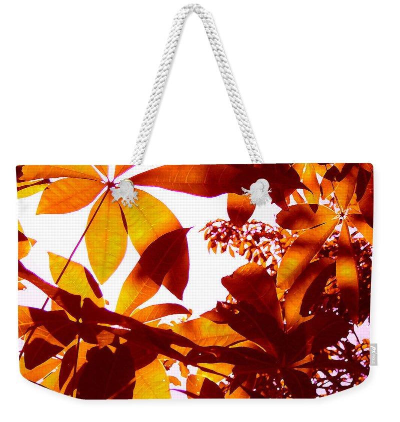 Garden Weekender Tote Bag featuring the painting Backlit Tree Leaves 2 by Amy Vangsgard