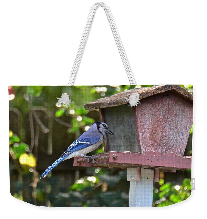 Blue Jay Weekender Tote Bag featuring the photograph Backyard Bird Feeder by Carol Bradley