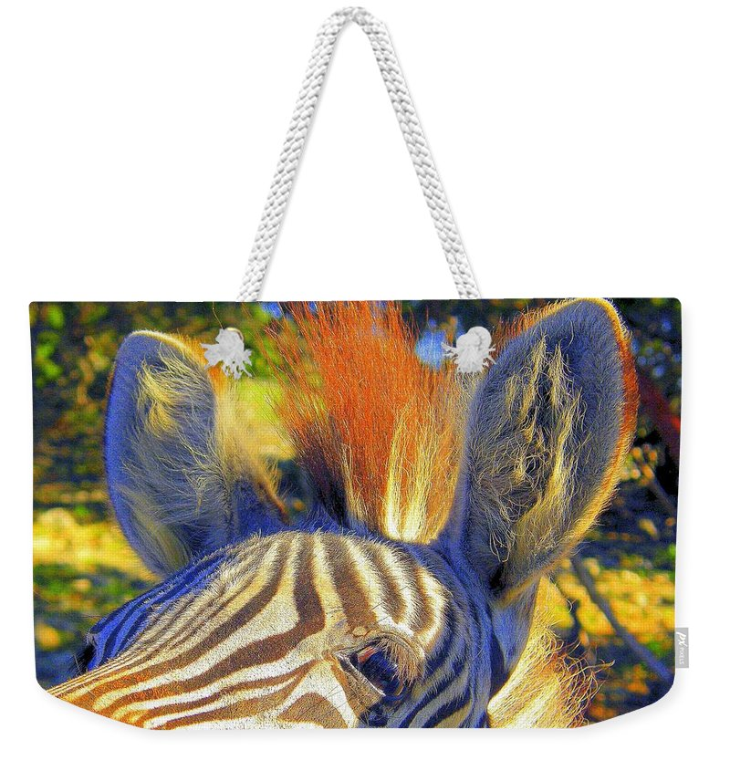 Mammals Weekender Tote Bag featuring the photograph Bad Fur Day Sold by Antonia Citrino