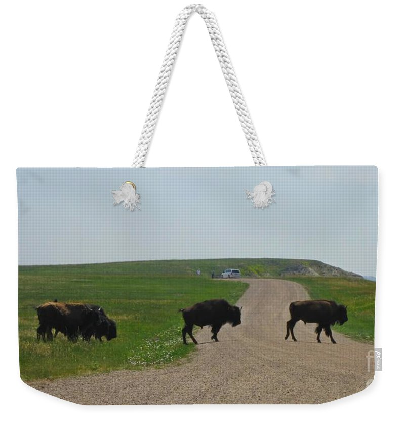 Buffalo Weekender Tote Bag featuring the photograph Badlands Buffalo by Crystal Loppie Halifax Photographer