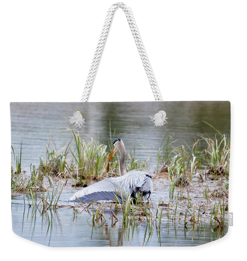Great Blue Heron Weekender Tote Bag featuring the photograph Balance by Thomas Phillips
